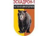 "Логотип ООО ЧОП ""Эскадрон-1"""