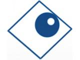 """Логотип ИП Гафонова """"Видеонаблюдение"""""""