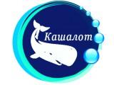 """Логотип """"Кашалот"""" Служба доставки чистой питьевой воды"""